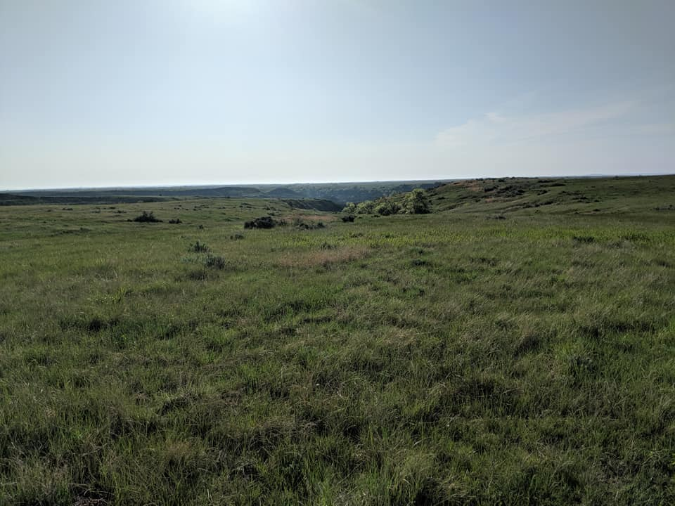 Flat prairie as far as the eye can see at the start of the Petrified Forest Trail in Theodore Roosevelt NP.
