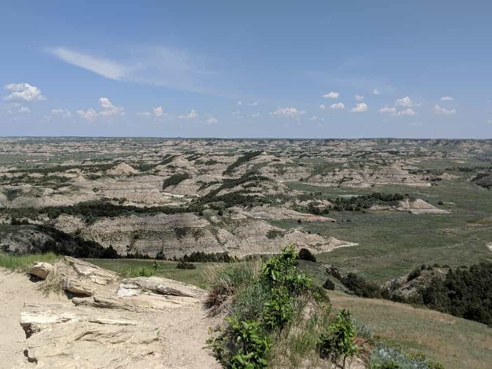 View off the edge of Buck Hill in Theodore Roosevelt National Park. there is green grass where the ground is flat. And you can see numerous large hills made up of rocks that have rings of colors (in greys, yellows, reds, and whites). The top of the hills are usually more flat with dark green trees on them.